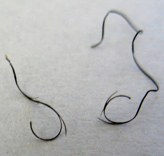 How Hair Trims Increases Length Retention