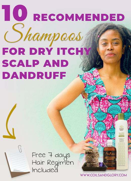 10 Best Anti-Itch Shampoos For Dandruff and Itchy Scalp