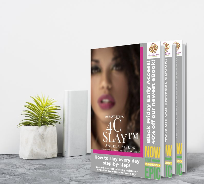 curly coily 4c slay natural hair growth e-book